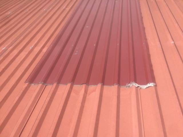 Chống dột mái tôn tại quận gò vấp